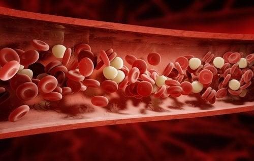 Circulația sanguină deficitară: 4 simptome