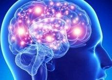 Anumite plante și condimente sunt foarte benefice pentru creierul uman