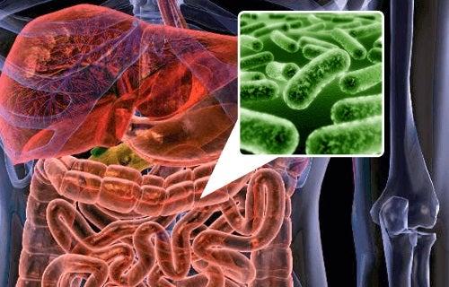 Printre altele, flatulența poate fi cauzată de dezechilibrele florei intestinale