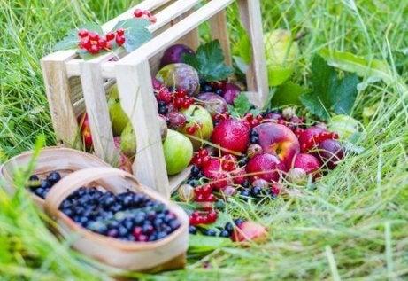 Tratează constipația cu un smoothie de fructe de pădure