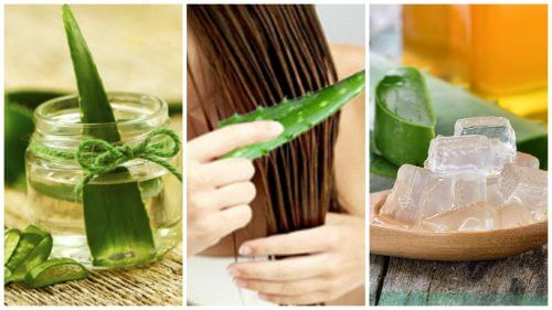 Aloe vera ajută la întărirea părului