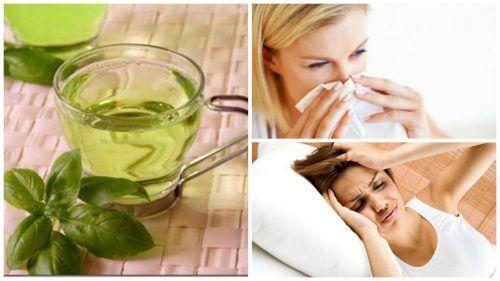 8 beneficii ale ceaiului de busuioc consumat zilnic