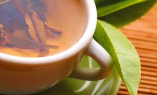 Ceaiul de salcie albă ameliorează tendinita