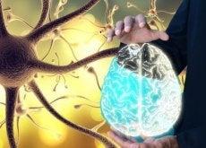 Nervul vag joacă un rol important în organism