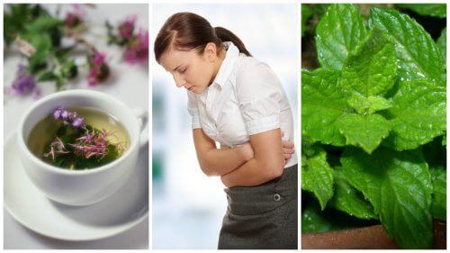 Sindromul de colon iritabil: 5 remedii naturale