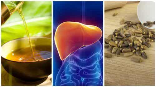 6 tratamente alternative pentru ficatul gras