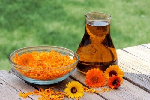 Uleiul de măsline cu gălbenele tratează varicele
