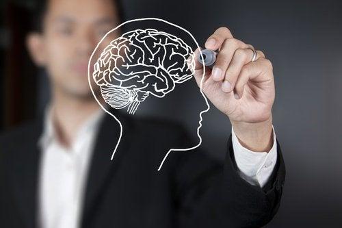 Beneficiile uleiului de pește pentru activitatea creierului
