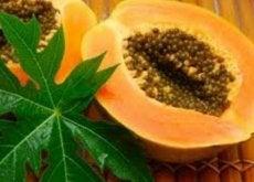 Frunzele de papaya au multe beneficii pentru sănătate