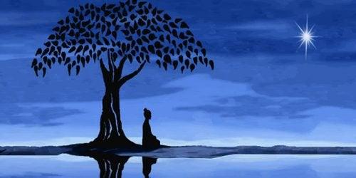 Dintre atâtea tipuri de meditație, încearcă meditația Vipassana se concentrează pe respirația nazală