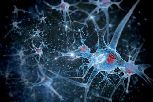 Sarea de mare este benefică pentru creier