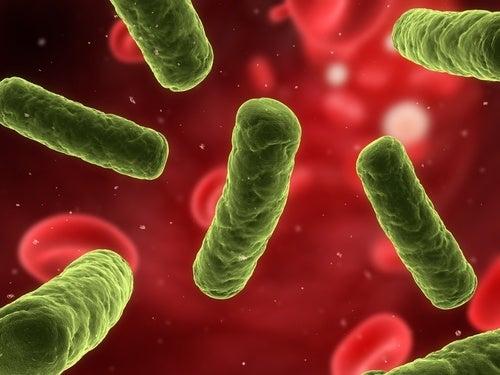 Sarea de mare pentru imunitatea organismului