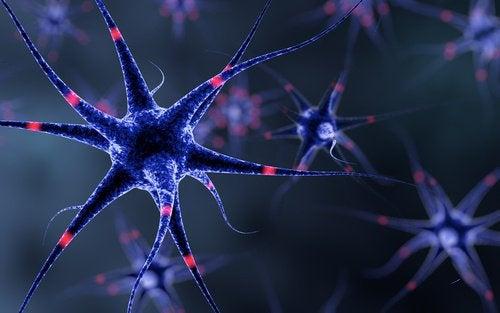 6 trucuri pentru întărirea sistemului nervos