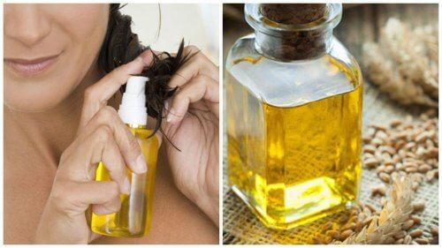 Uleiul din germeni de grâu: 6 beneficii pentru păr