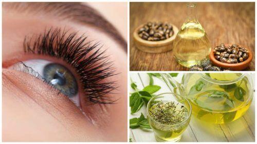 7 remedii naturiste pentru alungirea genelor
