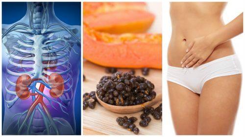 6 beneficii ale semințelor de papaya