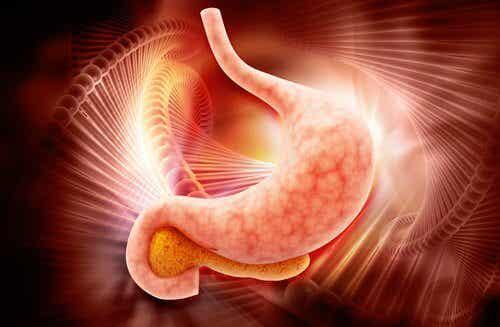 Depistarea cancerului de stomac în doar două ore