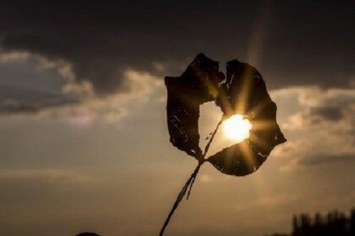 Un gol în suflet nu poate fi umplu decât cu dragoste de sine