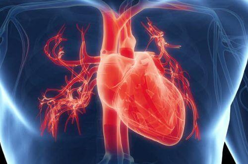 7 simptome care arată că ai probleme cu inima