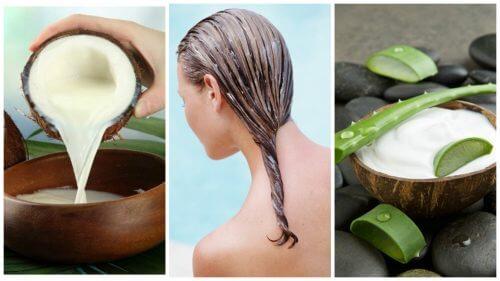 Remediu împotriva căderii părului cu aloe vera