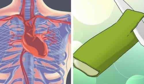 5 moduri în care aloe vera îngrijește inima