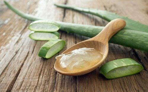 Remedii naturiste împotriva tartrului cu aloe vera