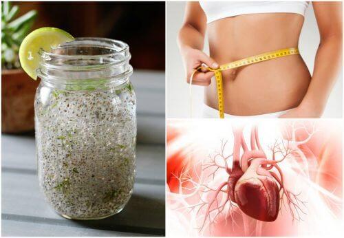 Semințe de chia cu lămâie: o combinație sănătoasă
