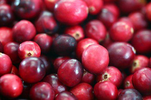 Crește un afin la tine acasă ca să ai mereu fructe proaspete