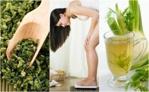 cea mai bună pierdere în greutate de plante medicinale)