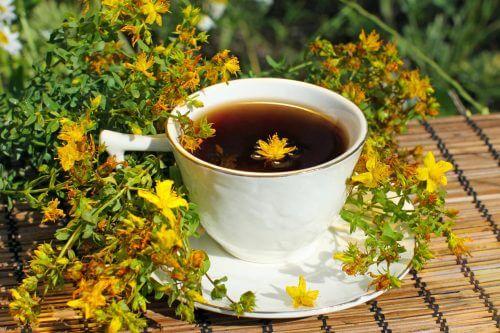Plante medicinale pentru tratarea depresiei ca sunătoarea