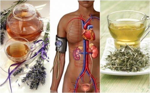 Reducerea tensiunii arteriale cu 5 remedii naturale