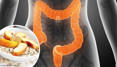 Tratarea sindromului de colon iritabil cu 4 alimente