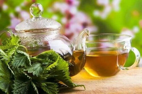 Ceaiul de urzică pe lista de băuturi care ameliorează durerea de rinichi