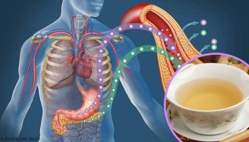 4 ceaiuri care scad nivelul glicemiei