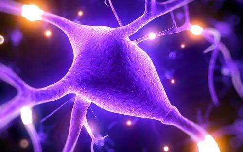 Magneziul îmbunătățește capacitățile mintale: 5 motive