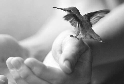 5 obiceiuri sănătoase pentru o viață liniștită