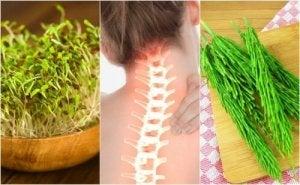 sinovita simptomelor și tratamentului articulației umărului
