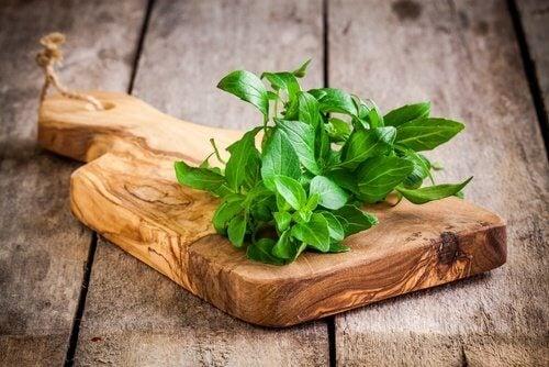 Plante medicinale benefice pentru sistemul osos precum busuiocul