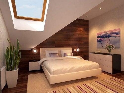 Plantele pe lista de obiecte utile pentru a avea un dormitor mai sănătos