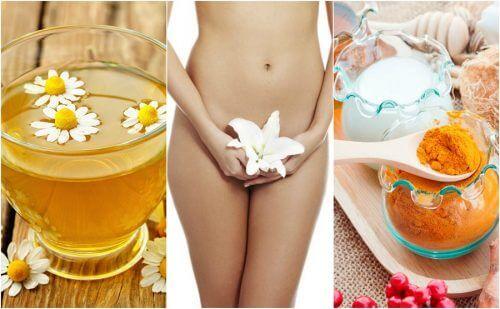 5 remedii naturale pentru lubrifierea zonei intime