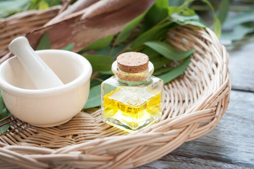 Remedii naturiste pentru păduchi cu uleiuri
