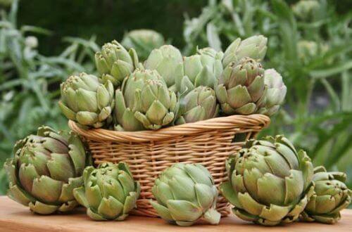 Plante sănătoase care ajută la slăbit precum anghinarea