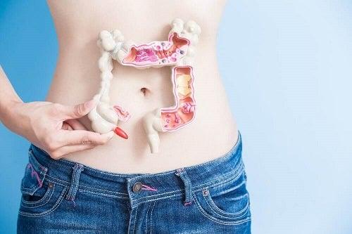 Semne care indică o problemă intestinală precum hiperglicemia