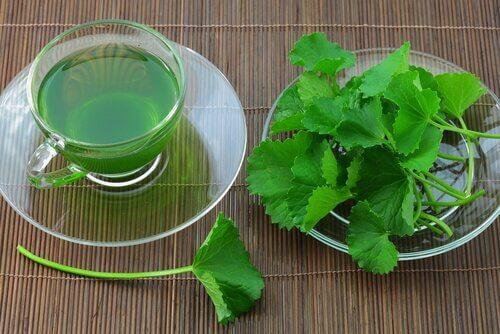 Țelina inclusă în ceaiurl pentru detoxifierea naturală a organismului