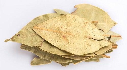 Frunzele de dafin sunt remedii naturale care întăresc plămânii