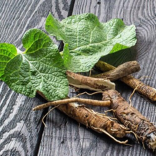 Rădăcina de lemn dulce pe lista de remedii naturale care întăresc plămânii