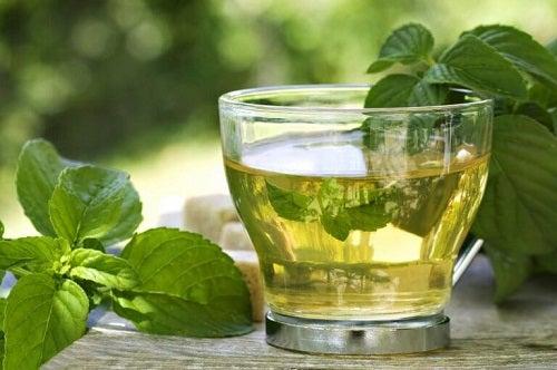 Mentă în băuturi cu ceai verde pentru slăbit