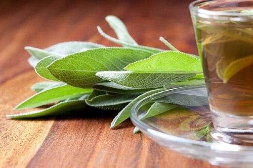 Salvia pe lista de remedii pentru reglarea pH-ului regiunii intime