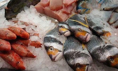 Specii de pește care nu trebuie consumate deoarece conțin mult mercur