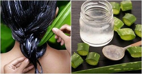 4 tratamente cu aloe vera pentru un păr mai sănătos
